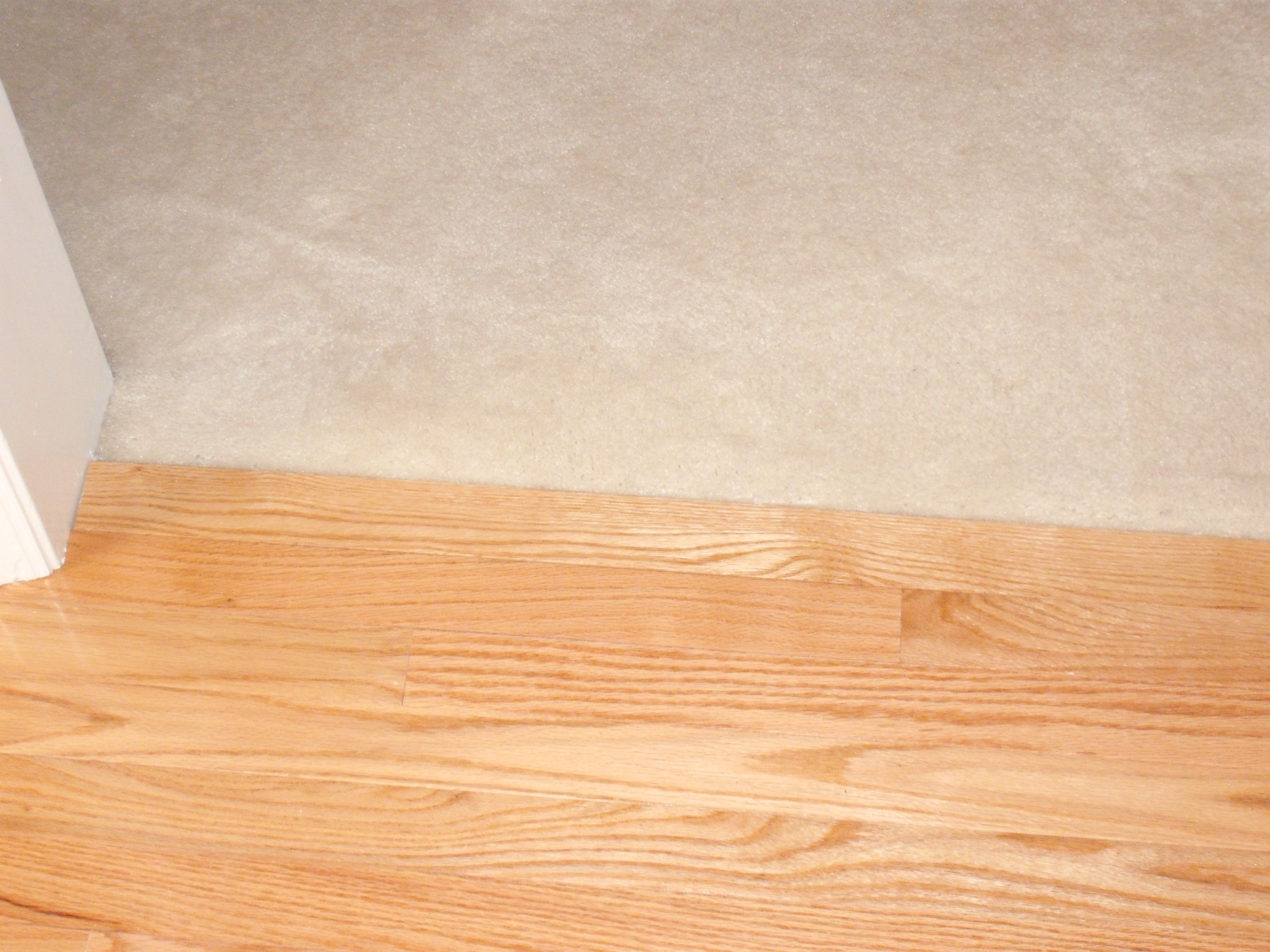 Carpet to wood floor transition carpet vidalondon for Hardwood floors or carpet